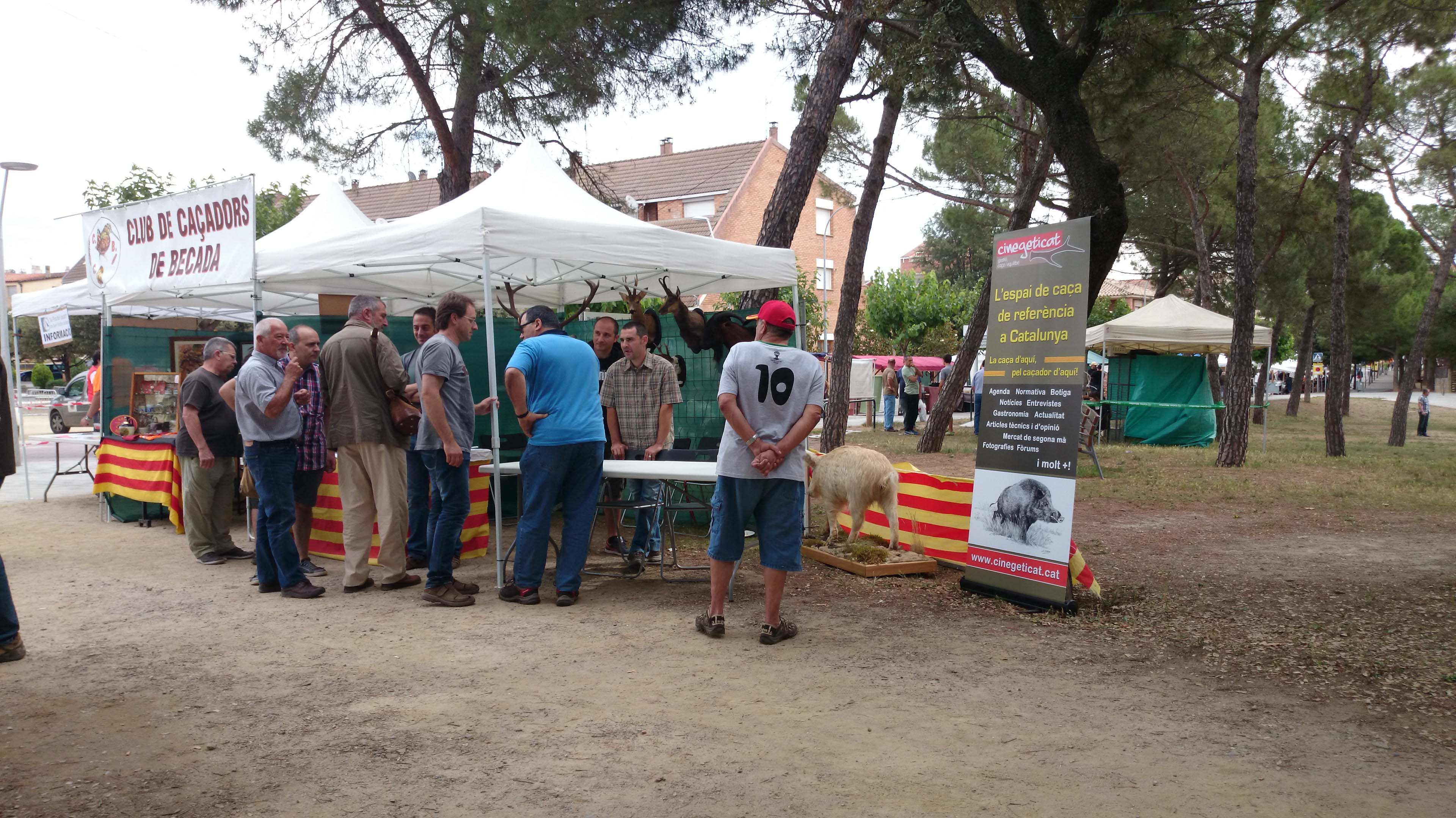 stand cinegeticat