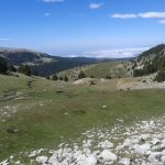 Subhasta cinegètica a les Reserves del Cadí i de la Cerdanya-Alt Urgell