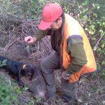 La recuperació d'animals ferits es fa un lloc a l'Ordre de Vedes