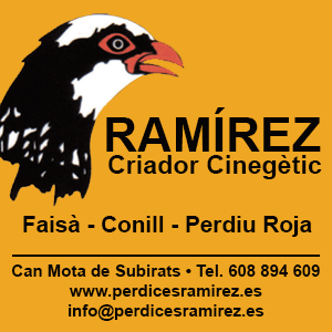 Perdices Ramírez