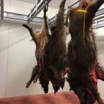 Publicat el Decret que regula la carn de caça