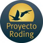 El projecte RODING