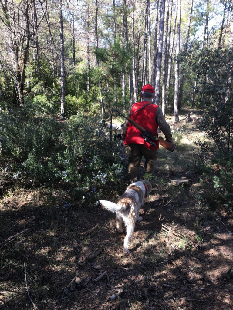 Hunter i gos