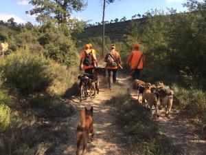 perreros y perros