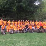 12 senglars abatuts a la Cacera de les Dones